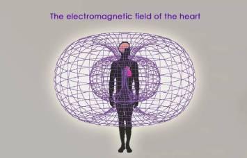 Heart-field
