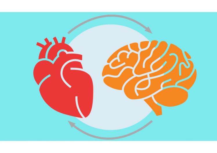 heart_brain.jpg