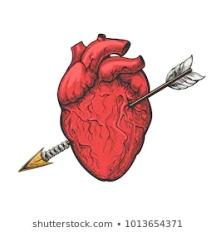 human-heart-arrow-drawing-real-260nw-1013654371